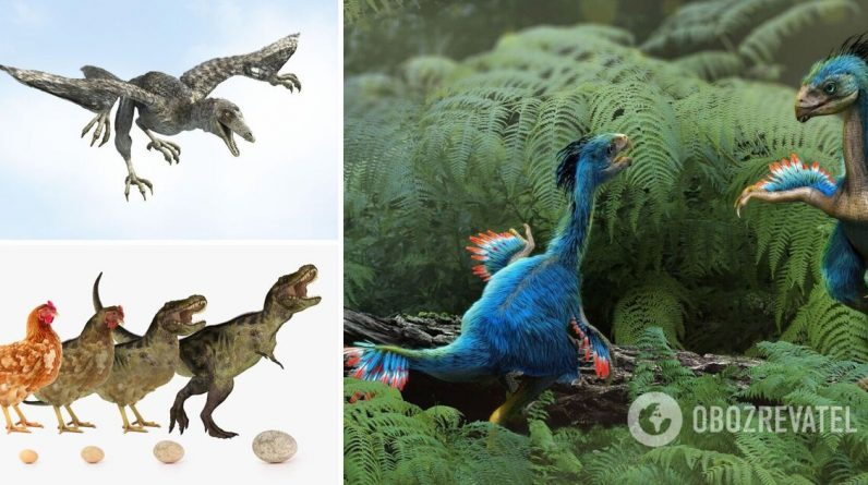 Extinction of dinosaurs on Earth: Why birds survived, research