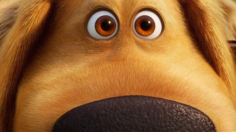 The Duck Days trailer celebrates International Dog Day again as a Pixar favorite