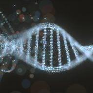 Image of DNA strand.