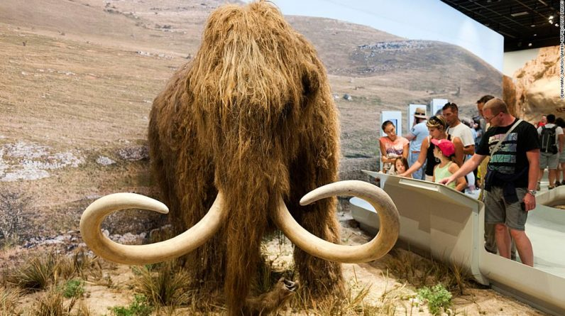 The Woolly Month Resurrection Project receives $ 15 million in support