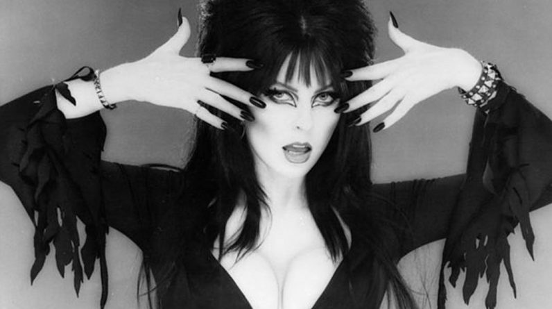 Elvira: We present to you the mistress of darkness who announced her lesbian relationship