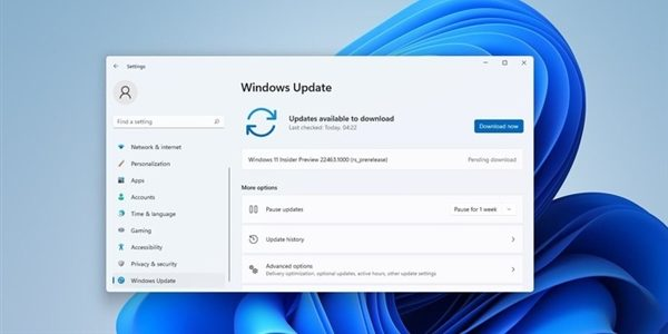 Lazy bag!  Updated content and a list of known issues in the new version of Win11!  |  Exfostest News