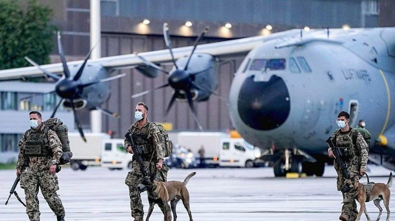 Did the US military in Afghanistan leave its military dogs in Kabul?