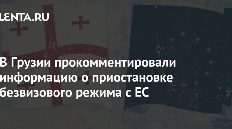 Georgia comments on suspension of visa-free rule with EU: Politics: World: Lenta.ru