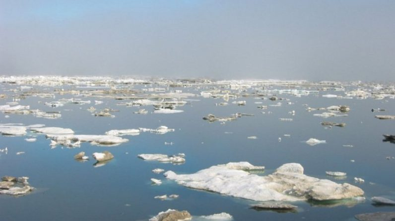 Scientists have discovered: The warming of the Arctic is linked to this