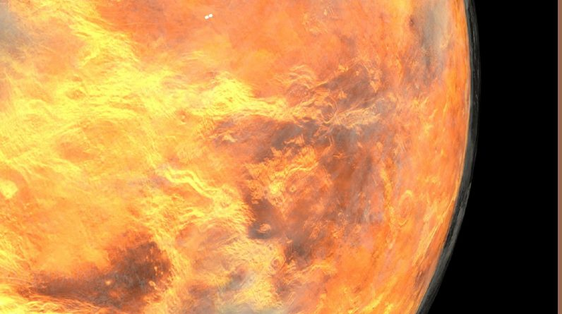 Venus may have life in its clouds