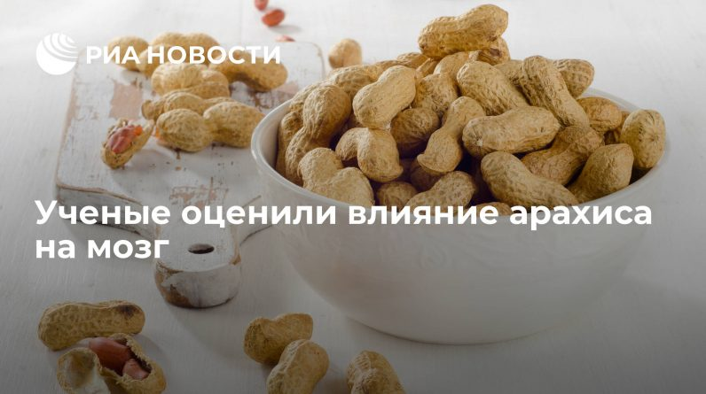 Scientists have evaluated the impact of peanuts on the brain