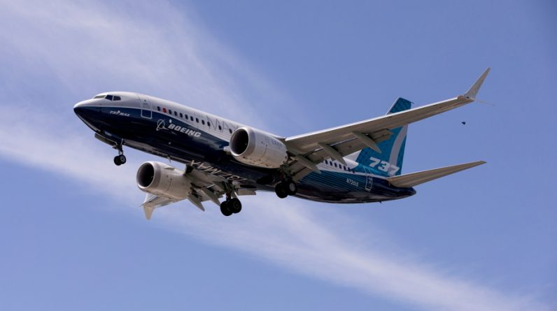 737 Max |  The charged former Boeing pilot did not want to become a 'scope code'