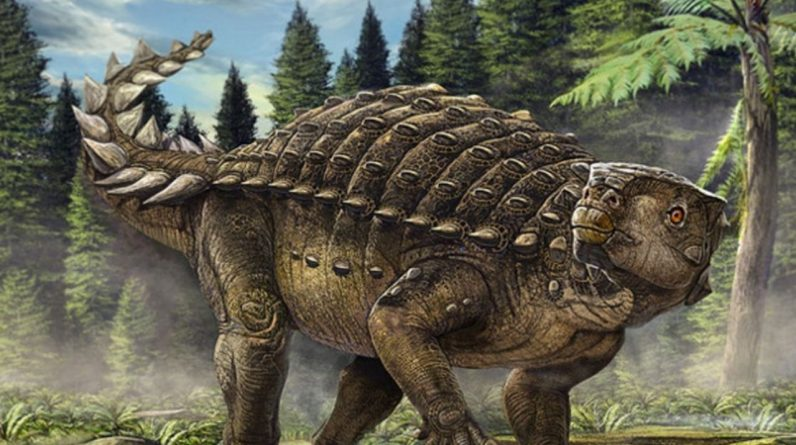 A completely unknown new dinosaur species has been discovered