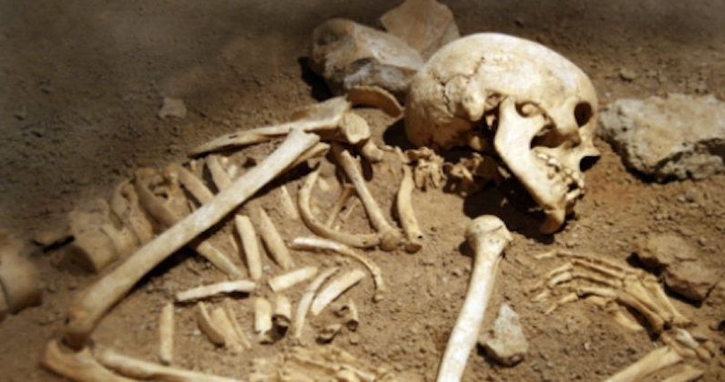 Dental tests challenge a theory about the origin of the first Americans