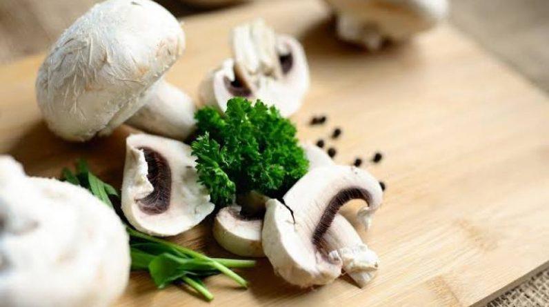 Jamur mengandung antioksidan yang melindungi diri dari kerusakan.