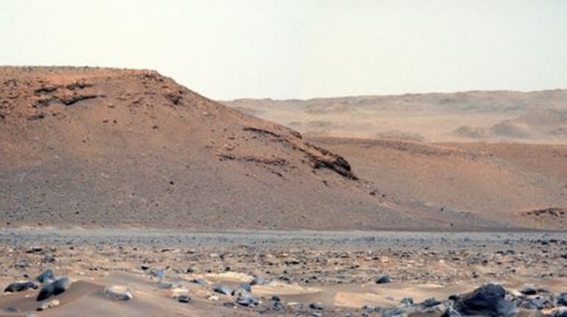 Why do scientists already know where to look for life on Mars?  Science